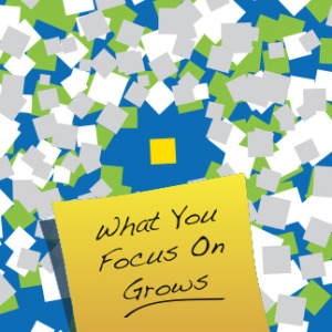 FOCUS: What Your Focus On Grows